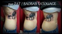 Pat16_tous_droits_réservés_Baobab_Tatouage