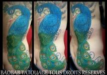 Pat70_tous_droits_réservés_Baobab_Tatouage